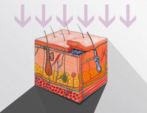 Veicolazione transdermica